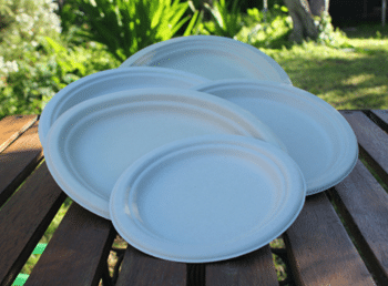 Bamboo Pulp Plates