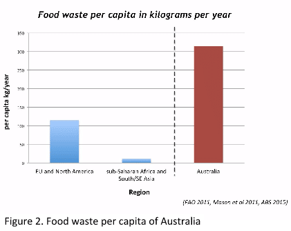 Food waste per capita