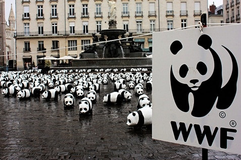 World Wildlife Fund is an organization for wildlife conservation